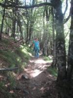 Vogesen-Wanderung